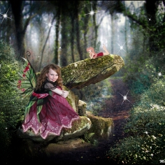 Chloe and the enchanted forest
