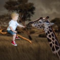 Van and the giraffe