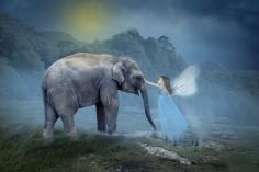 ESME AND ELEPHANT